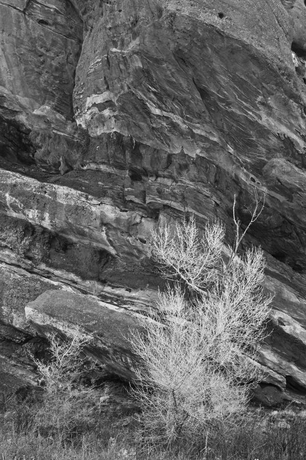 Red Rocks 02-2014 044-2