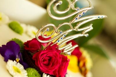 2015-08-22-julie-jeremy-wedding-011